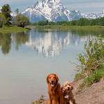 9893 Boys at Oxbow_Jackson-Hole